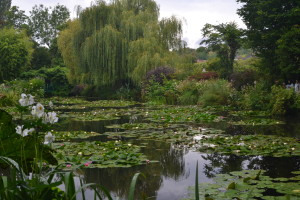 Giverny - Waterlilies